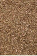 Image from Environment-textures.com - oregano0002.jpg