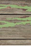 Image from Various environment textures pack - wood0009.jpg