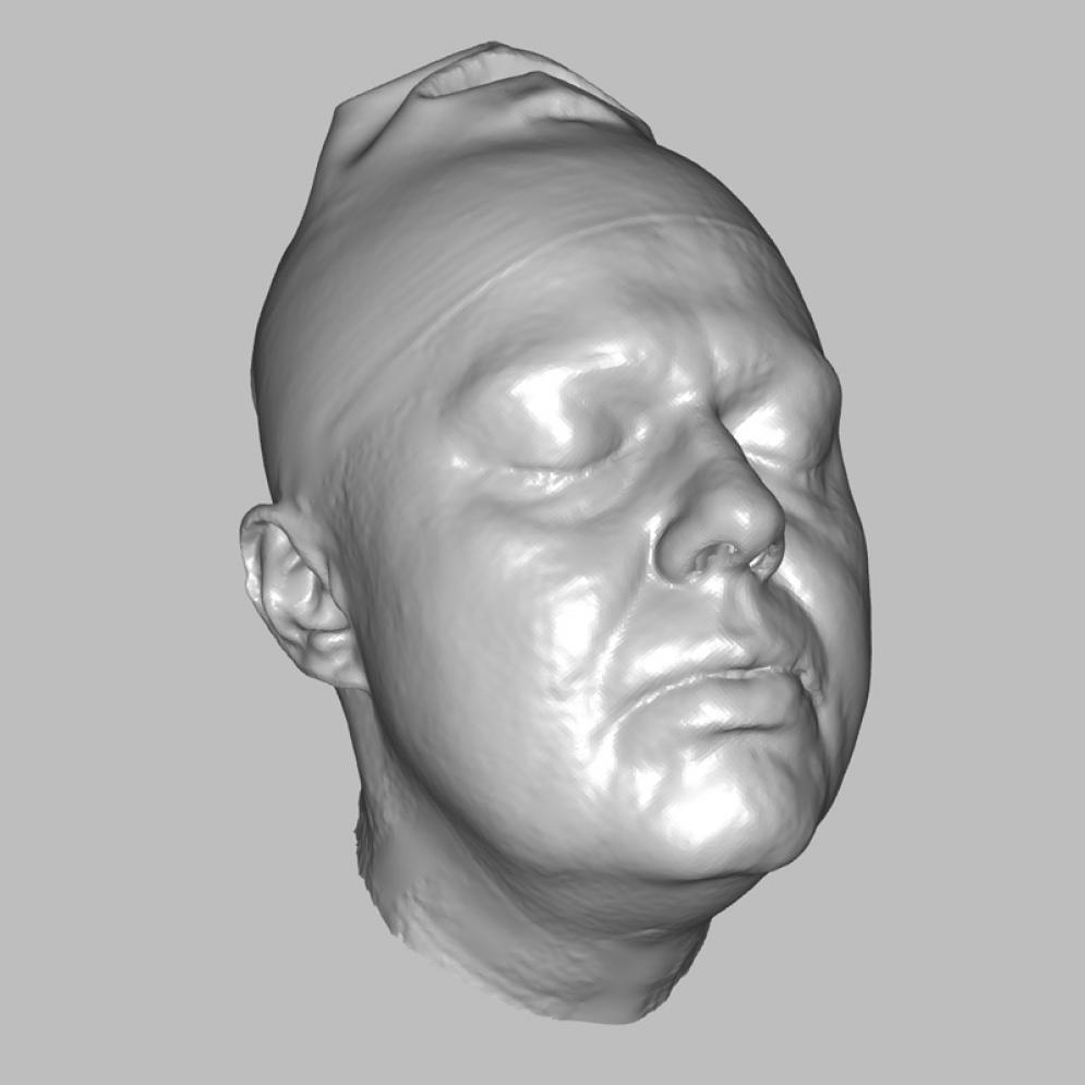 Image from Romana - real 3D scan of female head - romana.jpg