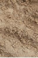 Image from  Free Sand textures from environment-textures.com - sand0012.jpg